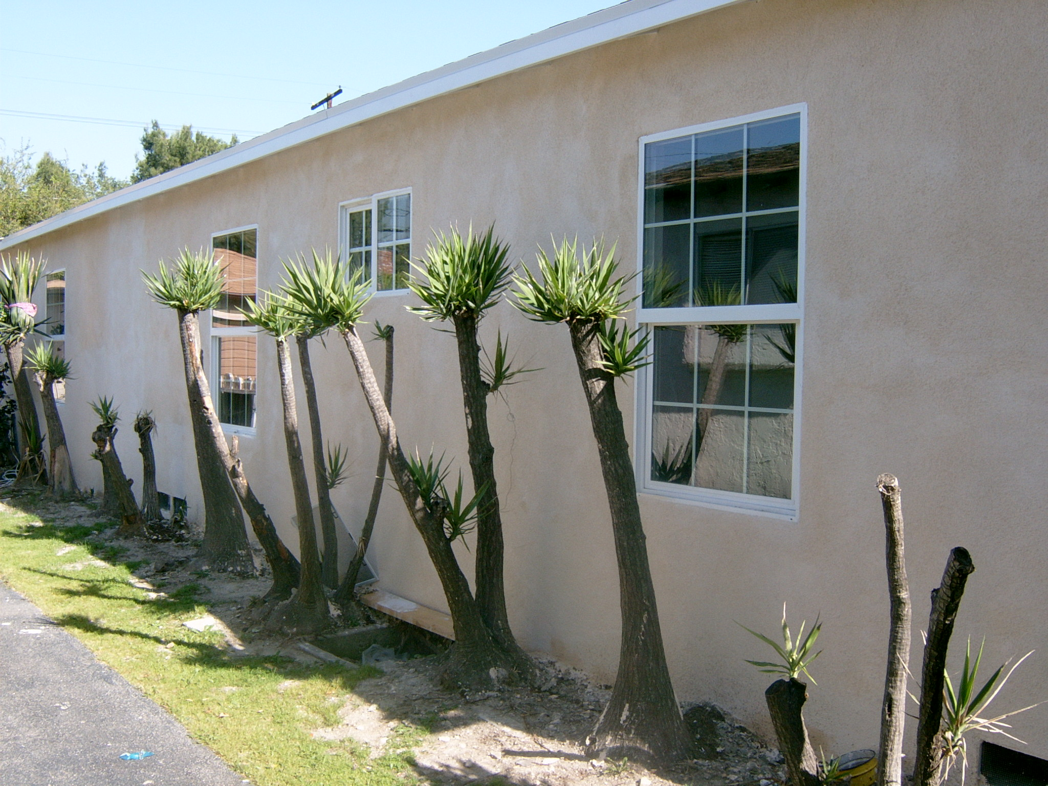 changing windos and restucco (4)